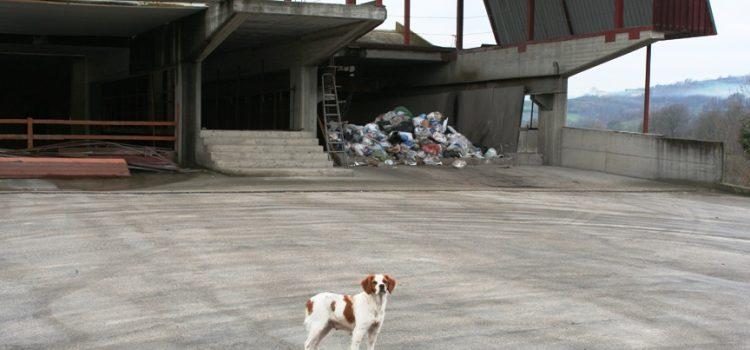 """Urban waste e """"non olet"""""""